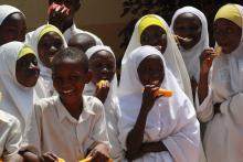 Source - Photo by ASSIST Nigeria, 2014. Description - In Nigeria, the USAID Applying Science to Strengthen and Improve Systems (ASSIST) Project supported the scale-up of national standards for vulnerable children programming in seven core service areas.